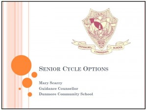 Information on Senior options#